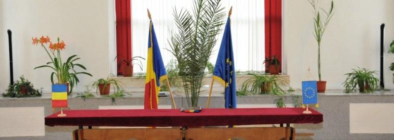Stare Civilă - Proceduri desfasurate de Serviciul comunitar Tecuci